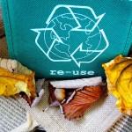 Jak efektywnie segregować śmieci